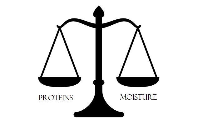 protein moisture balance