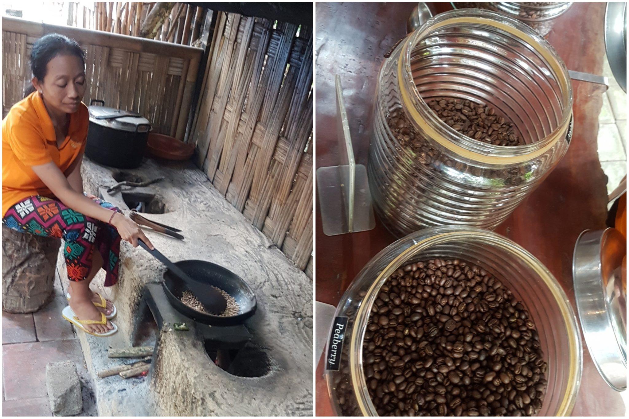 Plantation de café de Tirta Gangga